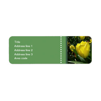 Etiqueta A tulipa amarela floresce o casamento