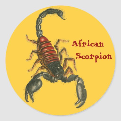 Etiqueta africana do escorpião adesivos