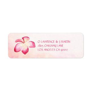 Etiqueta Aguarela cor-de-rosa do Plumeria do por do sol