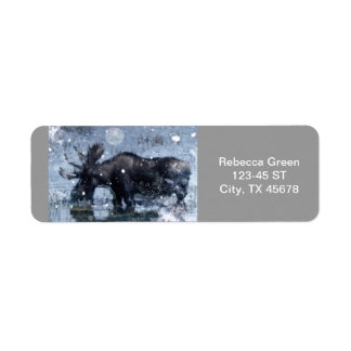 Etiqueta Alces rústicos do touro dos animais selvagens da