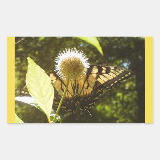 Etiqueta amarela do monarca