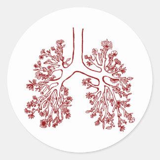 Etiqueta anatômica floral da ilustração dos