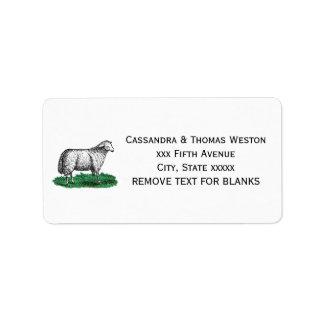 Etiqueta Animais de fazenda da ovelha dos carneiros do