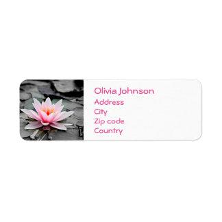 Etiqueta Arte cor-de-rosa bonita do zen de Waterlily da