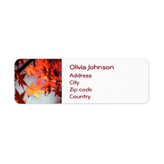 Etiqueta Árvore de bordo vermelha das folhas de outono da