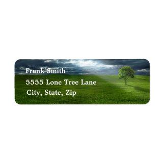 Etiqueta Árvore solitária em raios verdes do campo do