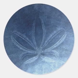 Etiqueta azul do dólar de areia