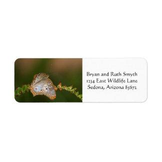 Etiqueta Borboleta de pavão branca nas folhas
