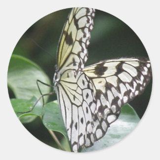 Etiqueta branca e preta da borboleta adesivos redondos