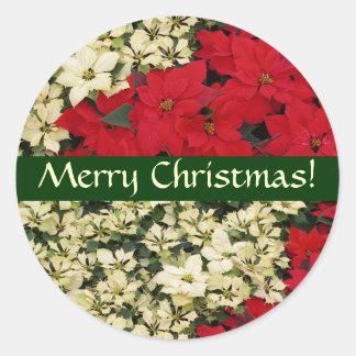 Adesivo Redondo Etiqueta branca e vermelha do Natal das poinsétias