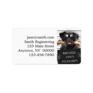 Etiqueta Cão do Mugshot, pug engraçado, pug