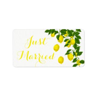 Etiqueta Casamento do verde amarelo do recem casados do