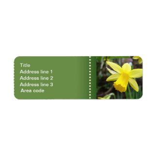 Etiqueta Casamento personalizado do foco Daffodil macio