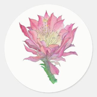 Etiqueta cor-de-rosa da flor do cacto
