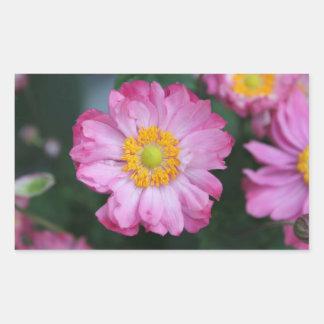 Etiqueta cor-de-rosa do jardim da fotografia da