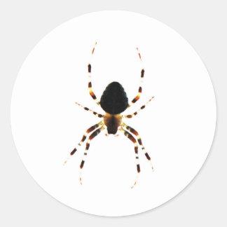 Etiqueta da aranha