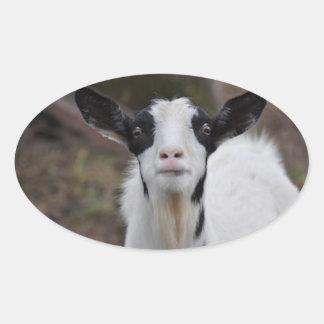 Etiqueta da cabra