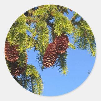 Etiqueta da foto da floresta da natureza com ramos adesivo