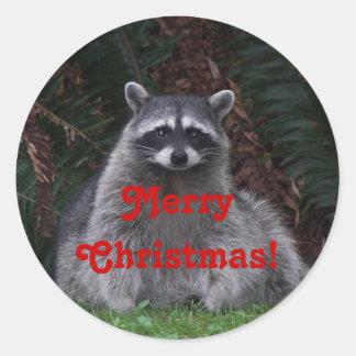 Etiqueta da foto do guaxinim do feriado do Natal