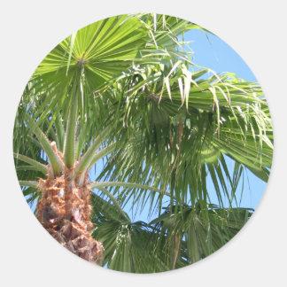 Etiqueta da palma do céu