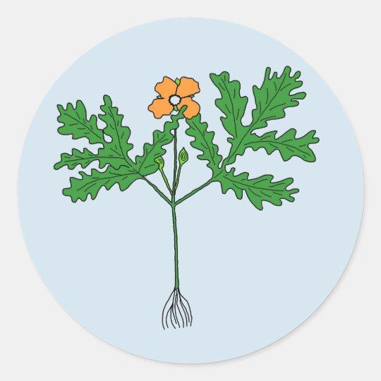 Etiqueta da planta da papoila