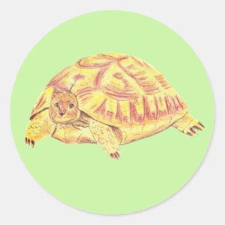 Etiqueta da tartaruga, etiqueta da tartaruga