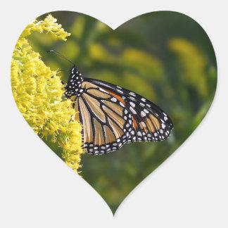 Etiqueta dada forma coração da borboleta de