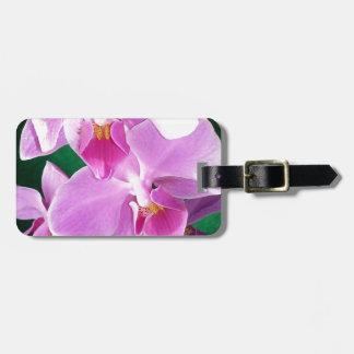 Etiqueta De Bagagem A orquídea floresce close up no rosa