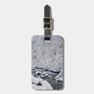 Etiqueta De Bagagem Angra cénico, Oregon do branco nevado