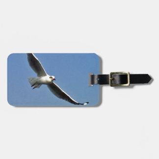 Etiqueta De Bagagem As gaivotas são pássaros bonitos