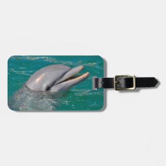 Etiqueta De Bagagem Ascendente próximo do golfinho