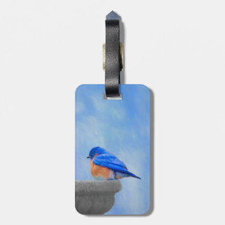 Etiqueta De Bagagem Bluebird
