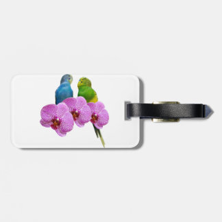 Etiqueta De Bagagem Budgie com orquídea roxa