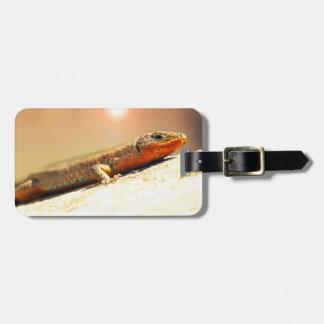 Etiqueta De Bagagem Calor de Lizart