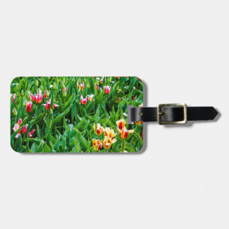 Etiqueta De Bagagem Campo com as tulipas cor-de-rosa e amarelas