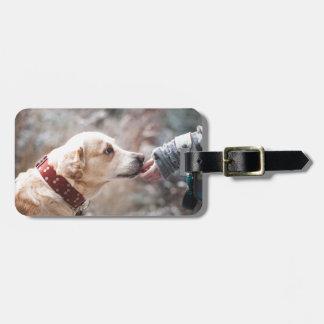 Etiqueta De Bagagem cão