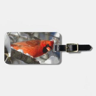 Etiqueta De Bagagem Cardinal
