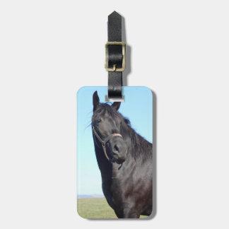 Etiqueta De Bagagem Cavalo preto e o céu azul