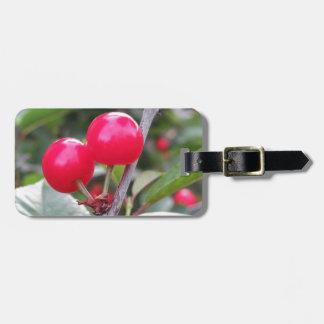 Etiqueta De Bagagem Cerejas vermelhas de Montmorency na árvore no