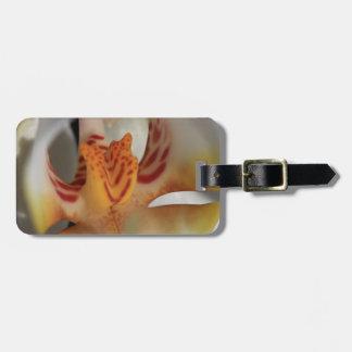 Etiqueta De Bagagem Close up da orquídea