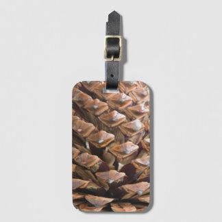 Etiqueta De Bagagem Close up do cone do pinho