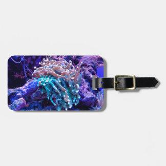 Etiqueta De Bagagem coral-1053837
