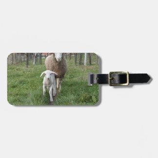 Etiqueta De Bagagem Cordeiro e carneiros