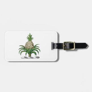 Etiqueta De Bagagem Crista heráldica formal da brasão do abacaxi