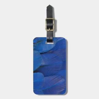 Etiqueta De Bagagem Design azul da pena do Macaw do jacinto