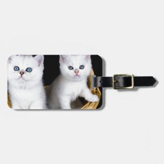 Etiqueta De Bagagem Dois gatinhos brancos na cesta em background.JP
