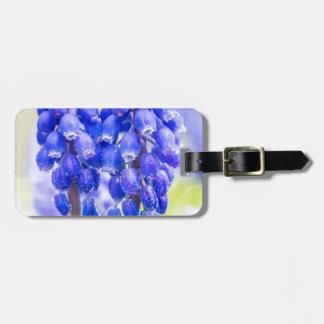Etiqueta De Bagagem Dois jacintos de uva azuis no primavera