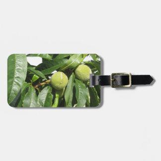 Etiqueta De Bagagem Dois pêssegos verdes unripe que penduram em uma