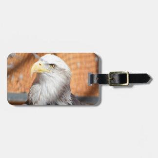 Etiqueta De Bagagem Eagle no deus que nós confiamos
