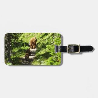 Etiqueta De Bagagem Família do urso de Brown